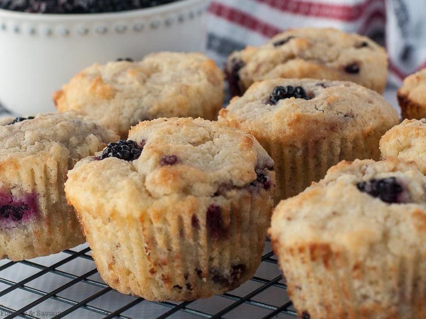 blackberry keto muffins