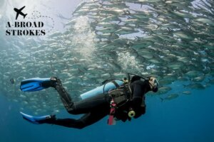 Scuba diving in the Caribbean gave me the meditative experience I didn't sign up for