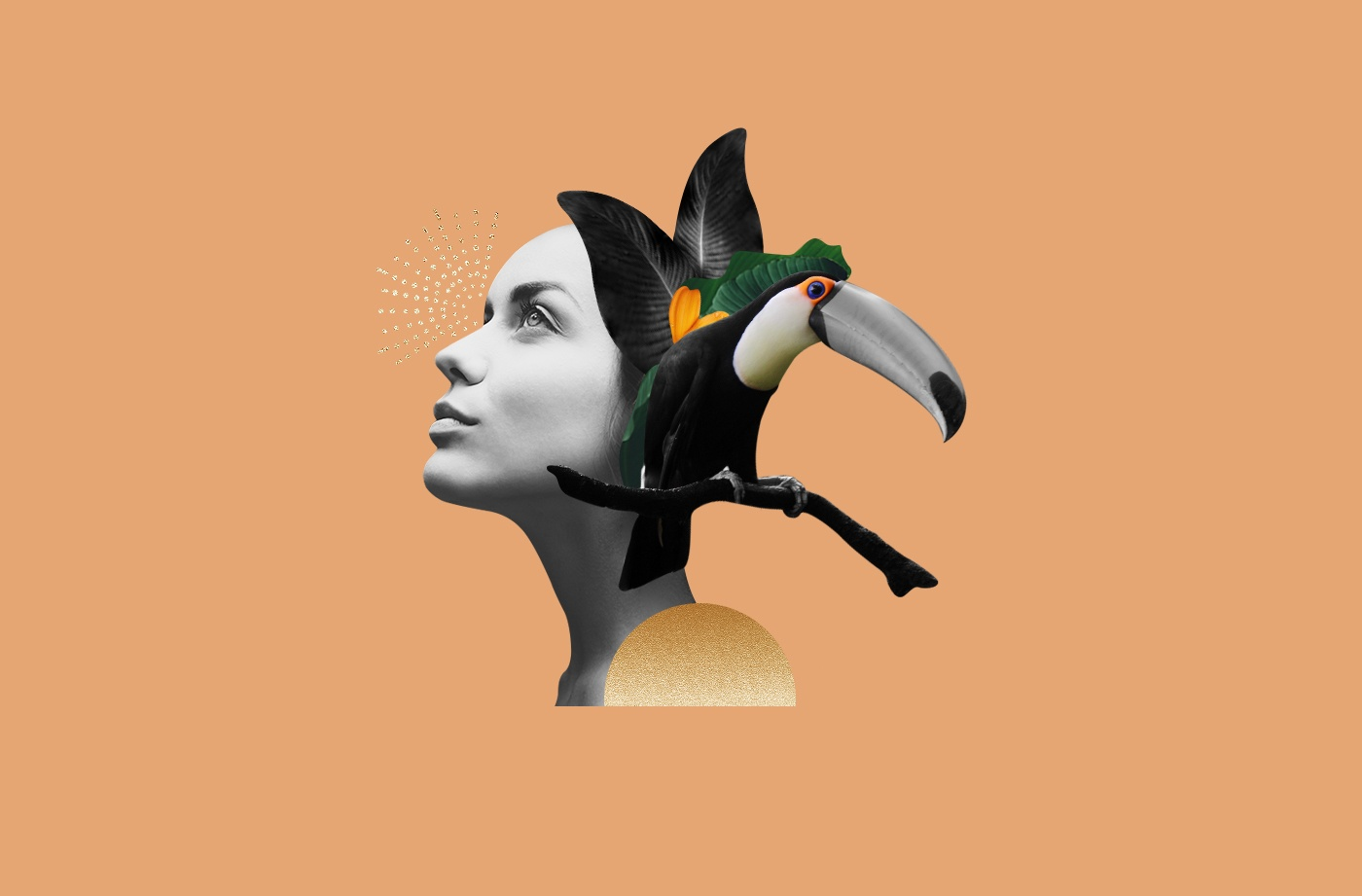 Thumbnail for The ultimate tropical spirit animal is here—why toucan medicine will transform your gray days