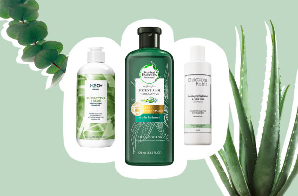 Aloe vera is so good for hair that it has 75 actives ready to shine up your strands