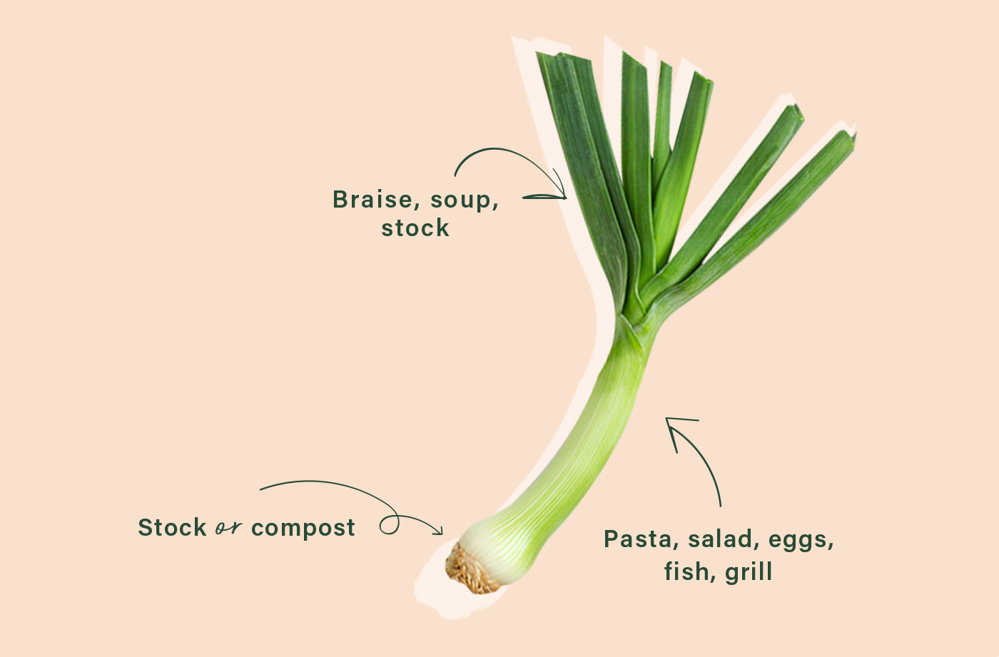 cooking with leeks