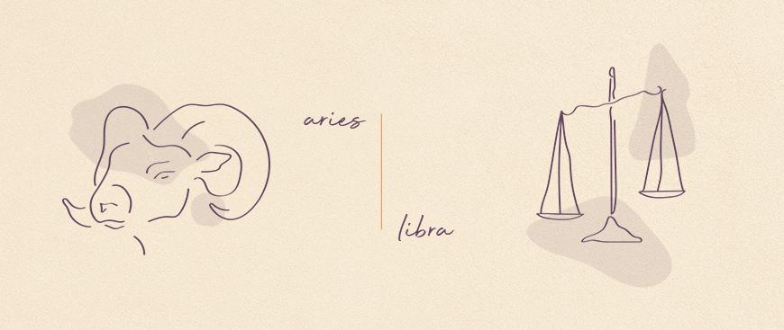 opposite zodiac signs