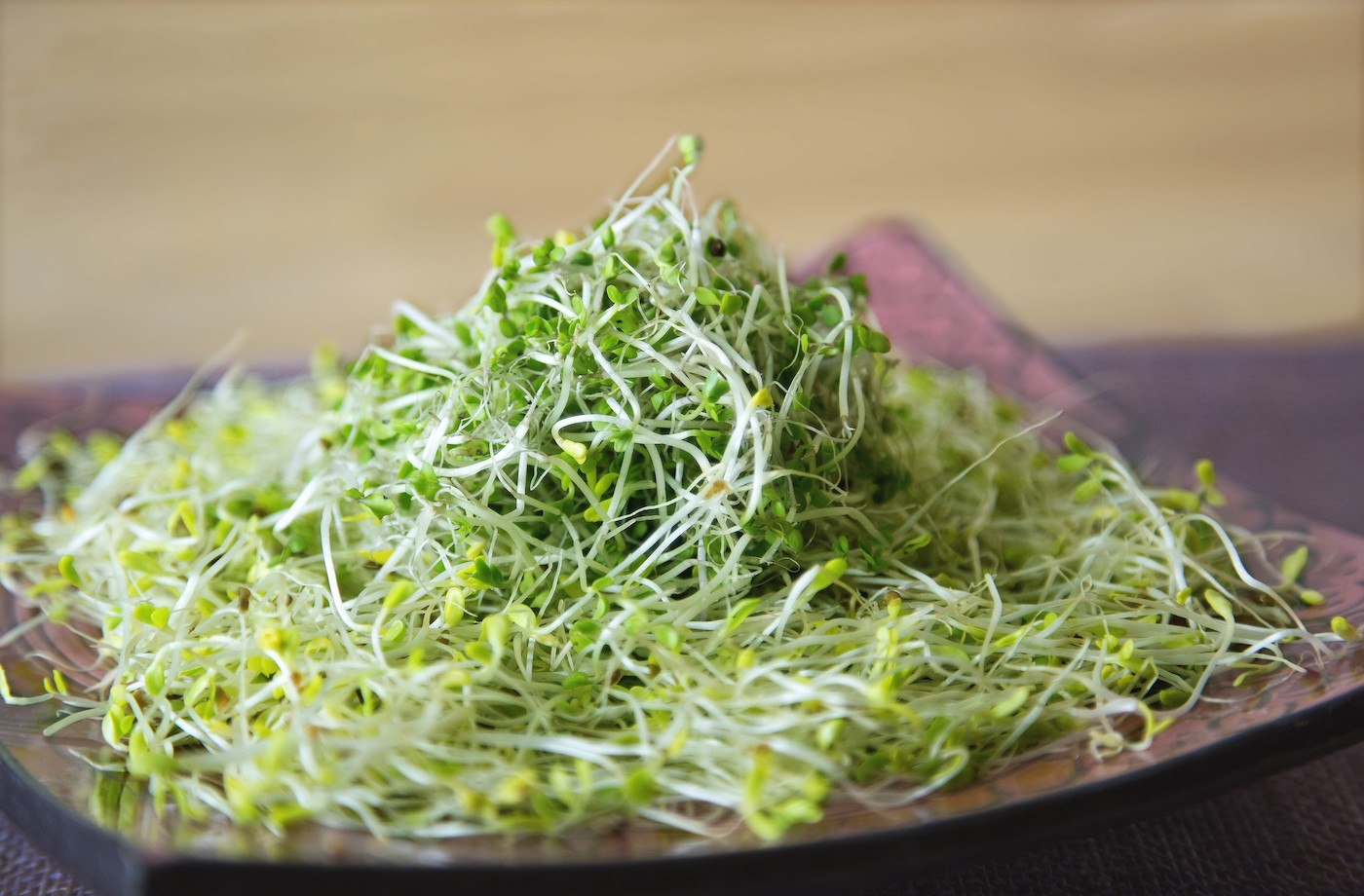 Thumbnail for 6 benefits of sprouts that will make you want to add them to your plate