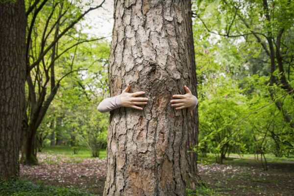 These Are the Benefits of Tree Hugging, Straight From a Forest Ranger Who Does It...