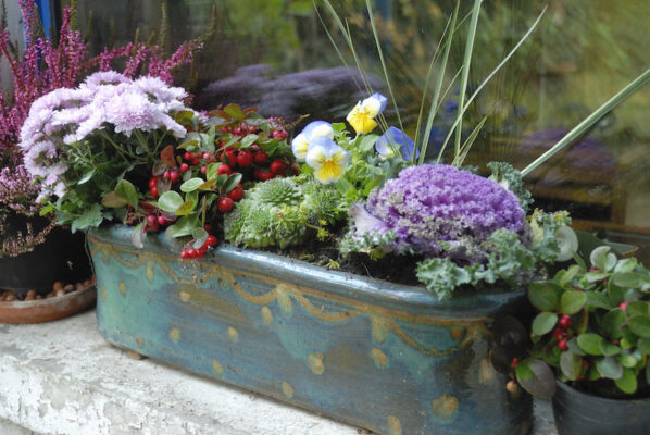 How to make a 3-step astrological garden with plants for zodiac signs