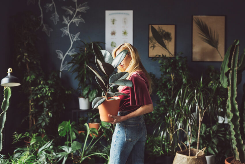 The Best Indoor Garden Ideas for All Kinds of Plant People