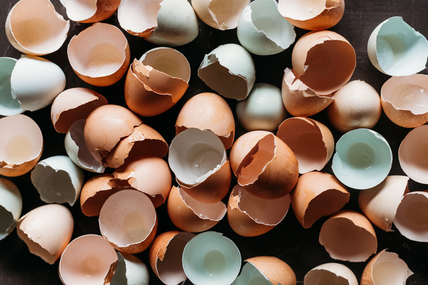9 unexpected eggshells uses for your kitchen, garden, and more