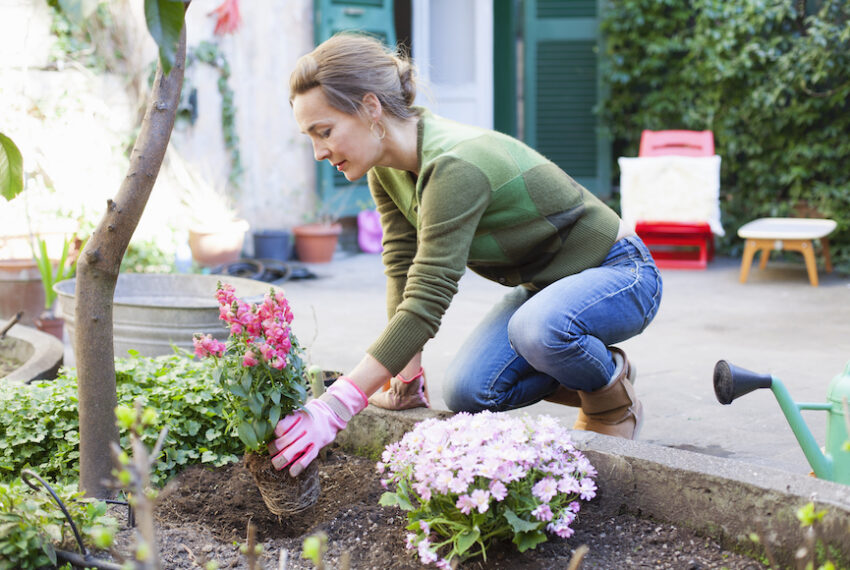 We figured out how to not hurt your back while gardening