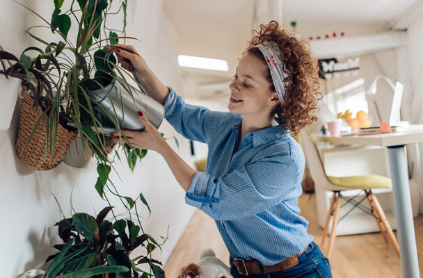 The Surprising Plant Fertilizer You've Already Got in Your Fridge