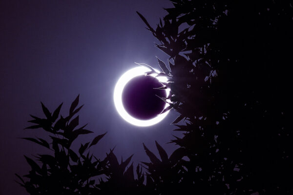 What This Weekend's 'Ring of Fire' Solar Eclipse Means for Your Astrological Sign