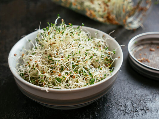Up-Level Your Gardening Game With Sprouting, Aka the Movement of Growing Your Own Food in...