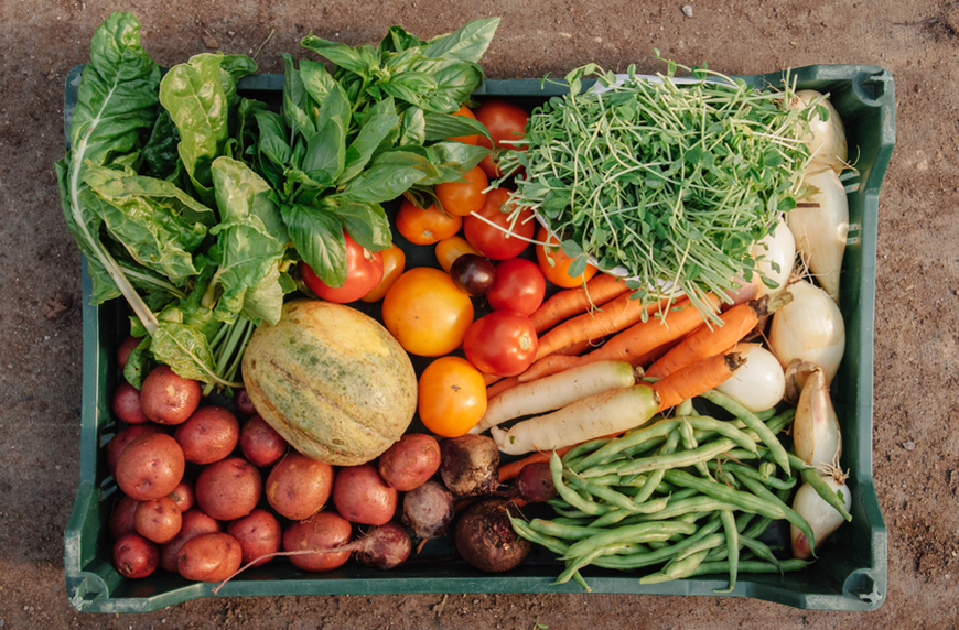 Thumbnail for 4 Food Industry Experts Share Their Hopes for Healthy Eating in 2021