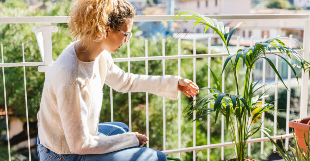 Nope, the Gardening Doesn't Stop When the Temps Drop—Here are 4 Plants to Score Now