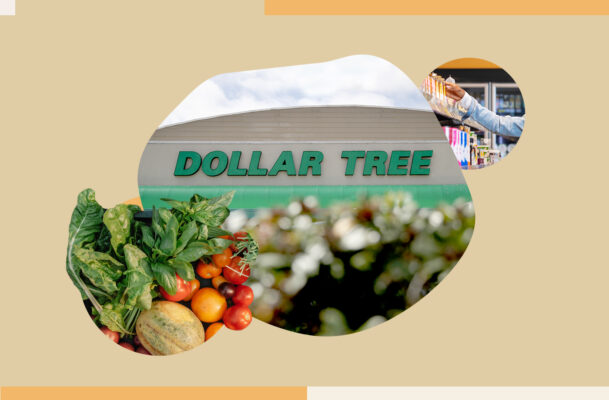 Dollar Stores Aren't the Answer To Alleviating Food Insecurity, So What Is?