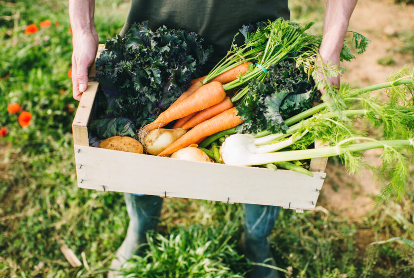 These CSAs Deliver Fresh Meat and Produce From the Farm Straight to Your Door