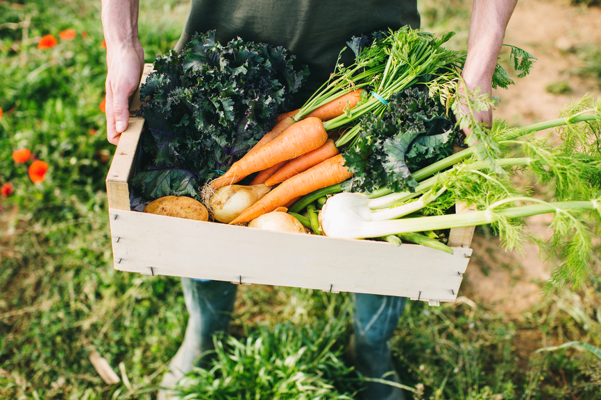 Thumbnail for These CSAs Deliver Fresh Meat and Produce From the Farm Straight to Your Door