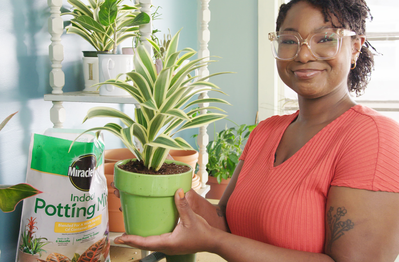 3 Tips for Newbie Plant Parents for Keeping Your Indoor Plants Alive