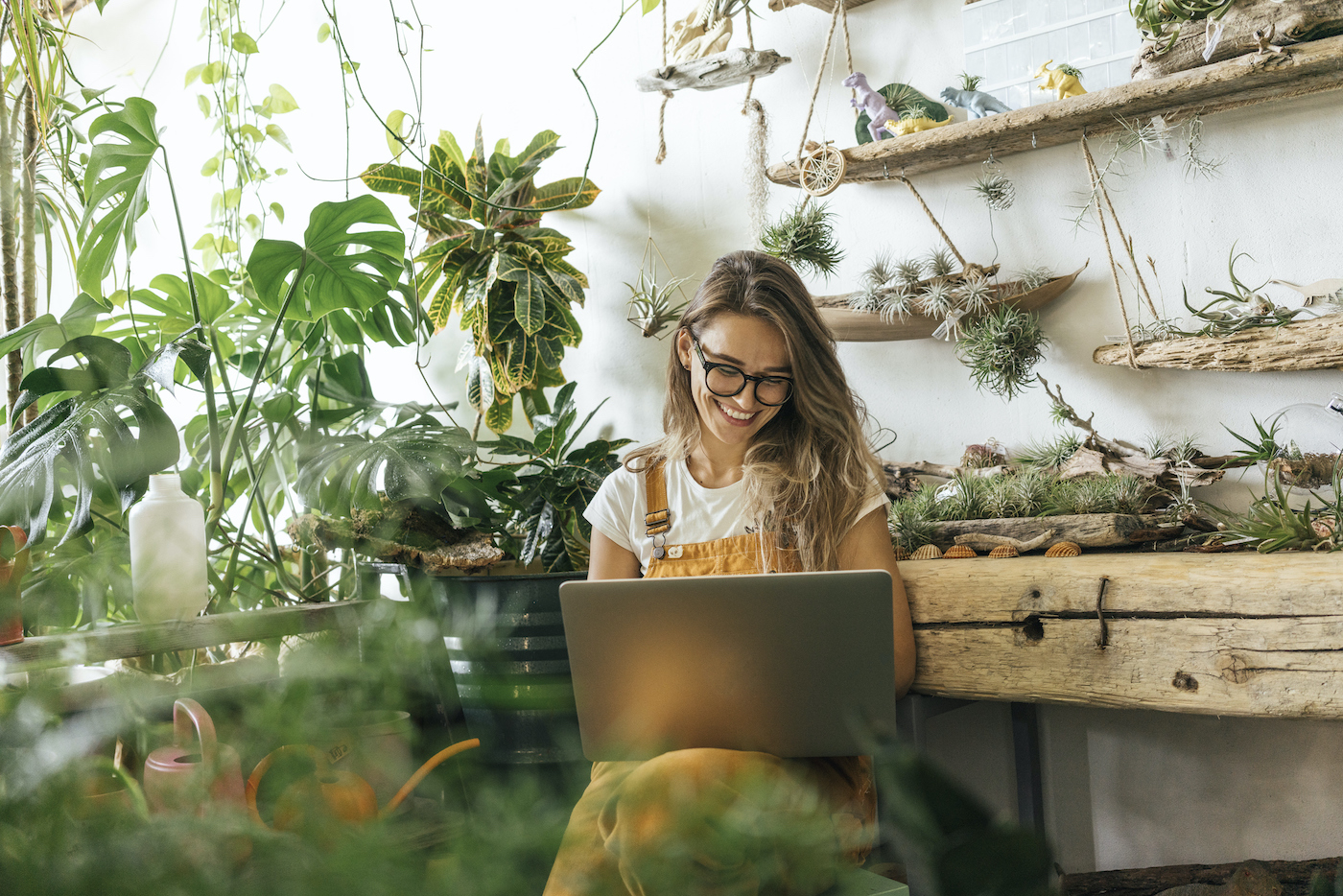 The 8 Best Places To Buy Plants Online To Turn Your Home Into a Leafy Paradise