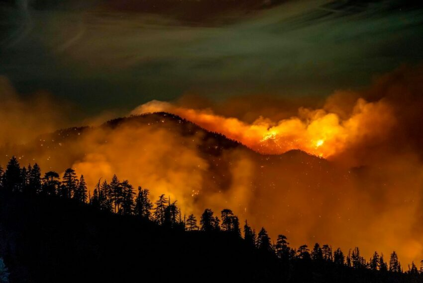 The Apocalypse Is Now: We Need Immediate Action Against Climate Change To Survive