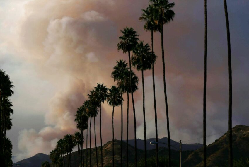 How To Take Care of Your Body When the Air Quality Is Unhealthy