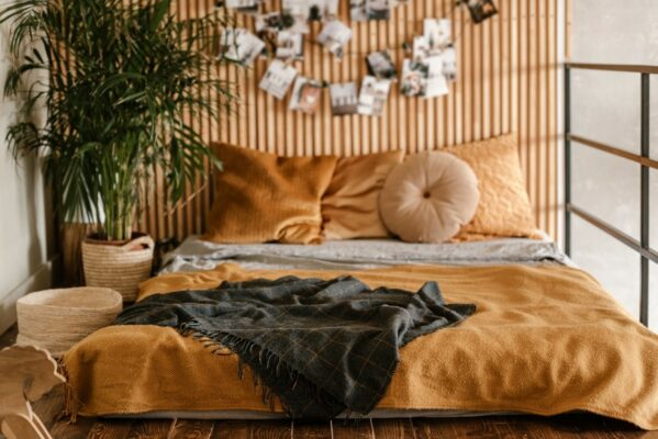 I Want To Fill My Bedroom With Plants *Without* Attracting Bugs—What Are My Options?