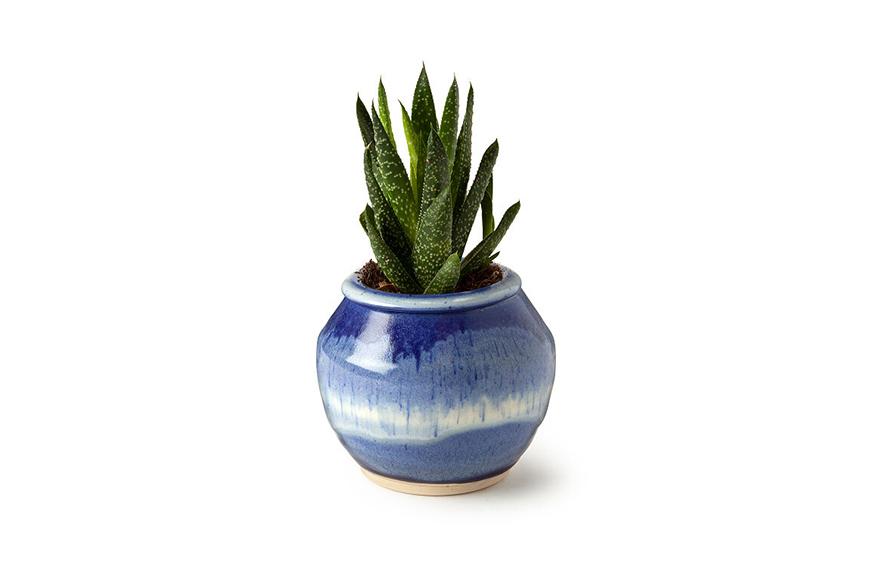 self watering pots 6