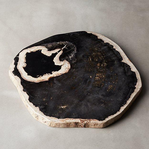 petrified wood charcuterie board