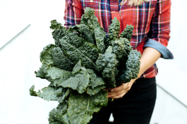 6 Healthy Winter Vegetables That Don't Require a Whole Lot of Space To Grow