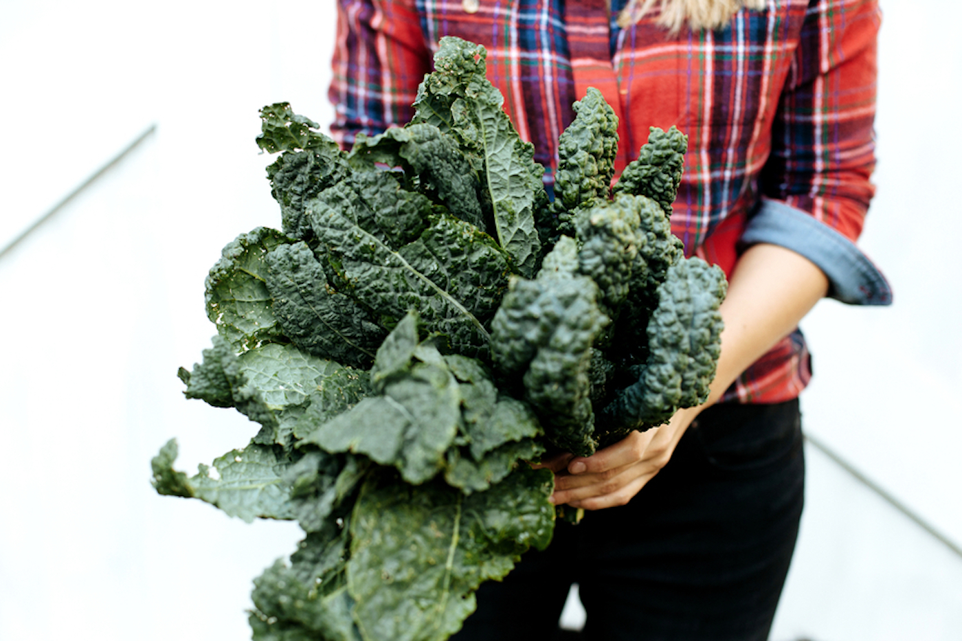 Thumbnail for 6 Healthy Winter Vegetables That Don't Require a Whole Lot of Space To Grow