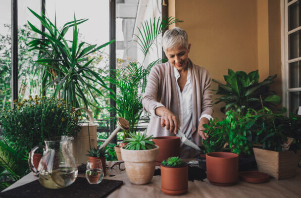 The Easiest Plant To Care For Throughout the Winter Is Totally Unexpected