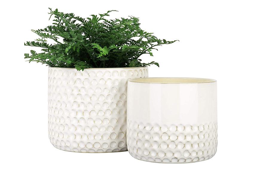 La Jolie Muse Ceramic Planter Flower Plant Pots