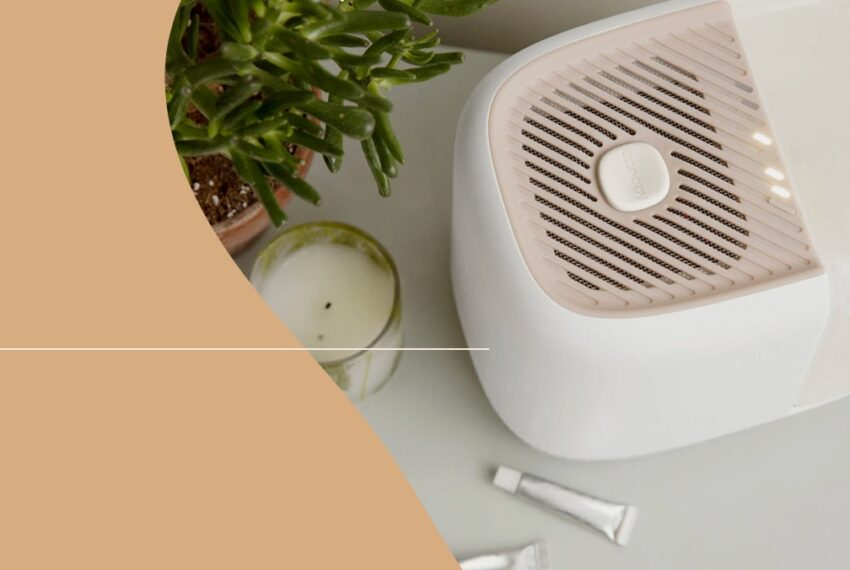 4 Mist-Free Humidifiers To Save Your Skin and Airways From Dry Winter Air