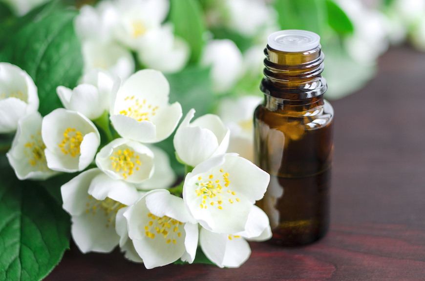 Thumbnail for 5 Sensual Jasmine Essential Oil Benefits That Make It a Must-Sniff for Blah Days