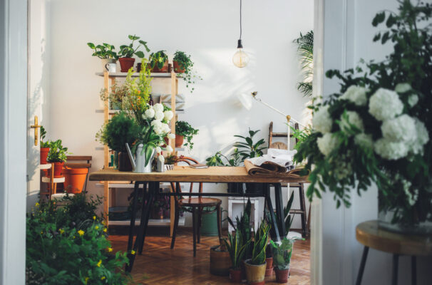 How To Create the Garden Room of Your Dreams