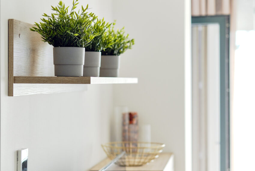 7 Indoor Plant Shelves for Sprucing Up Your Space