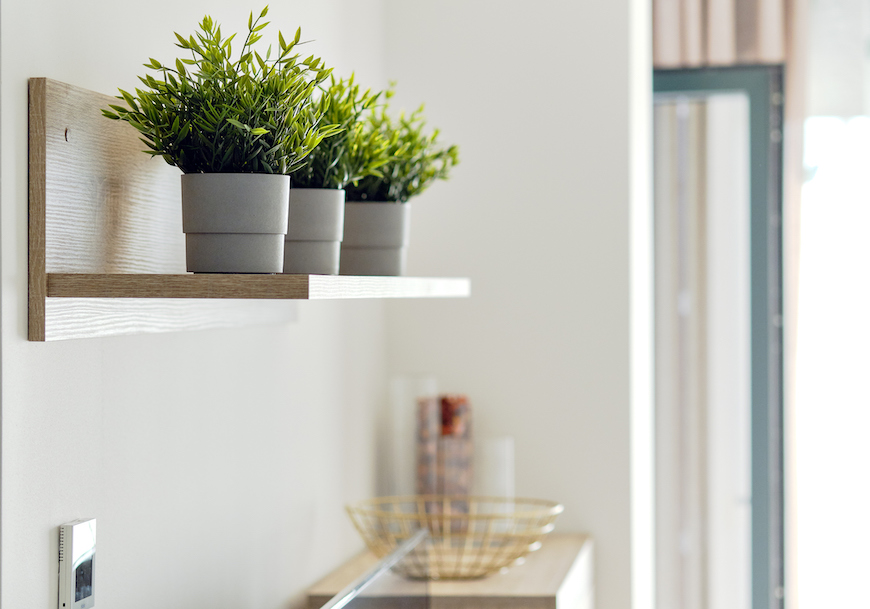 Thumbnail for 7 Indoor Plant Shelves for Sprucing Up Your Space