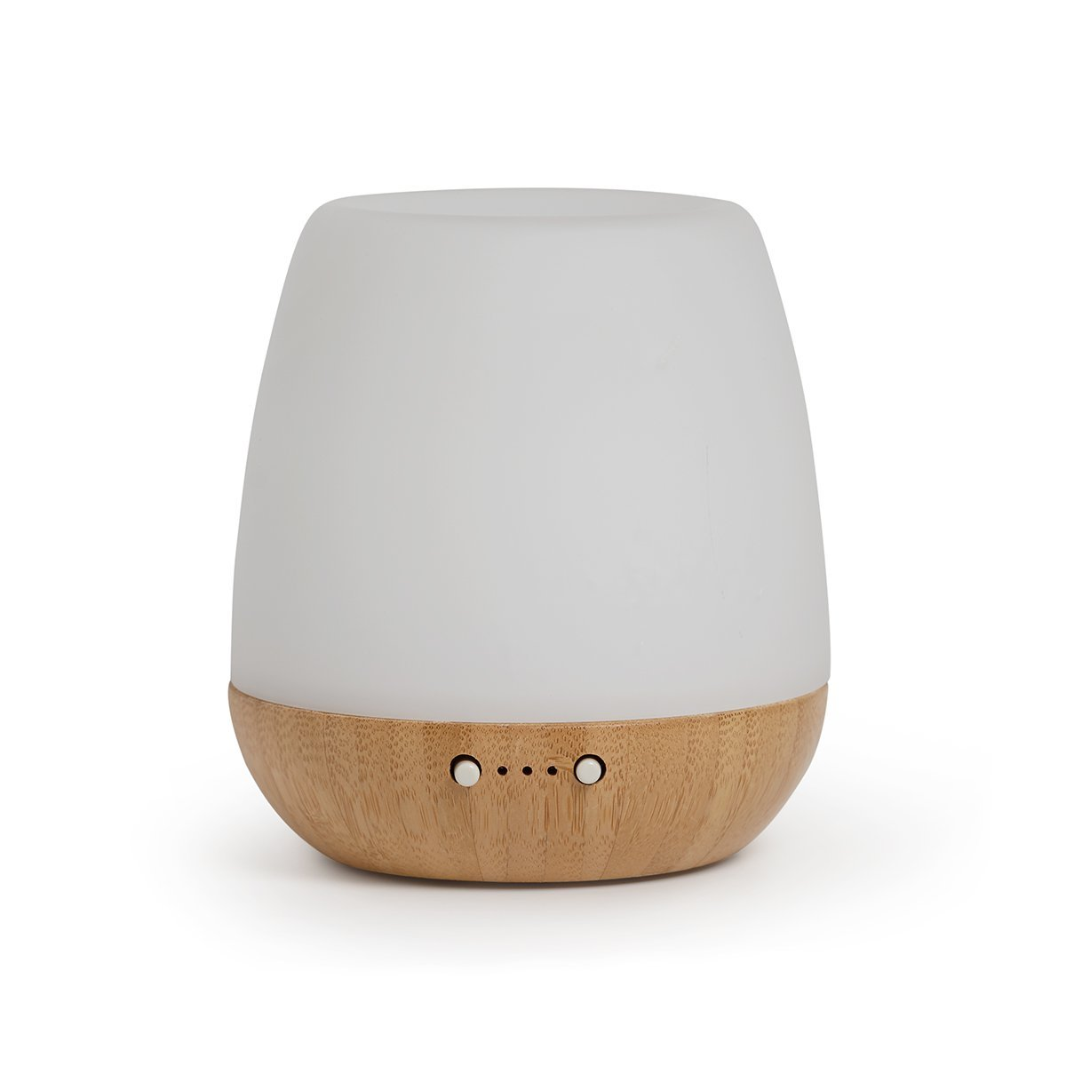 eco bliss diffuser