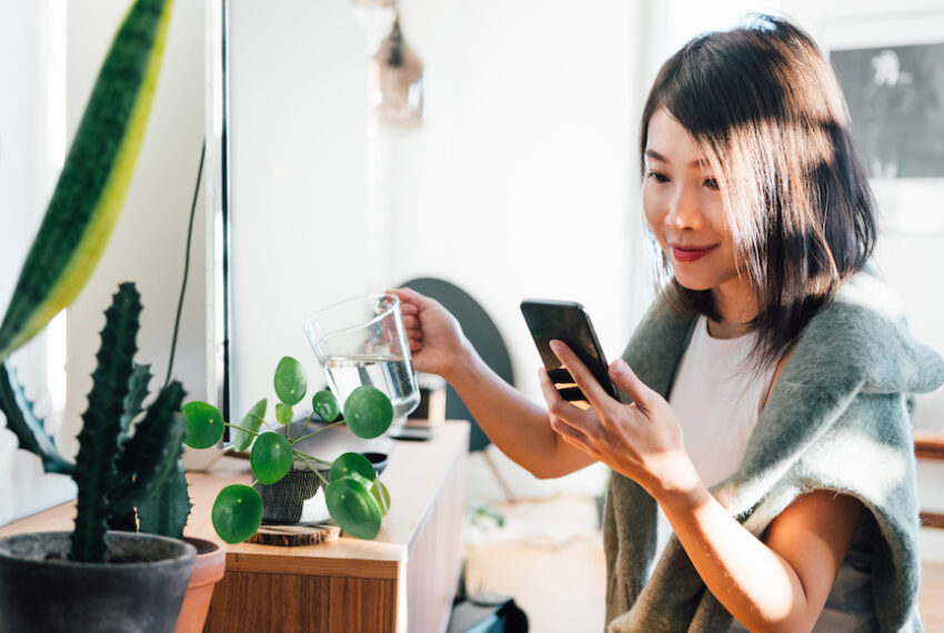 5 Apps That Identify Your Plants and Help You Save Them From the Brink of Death