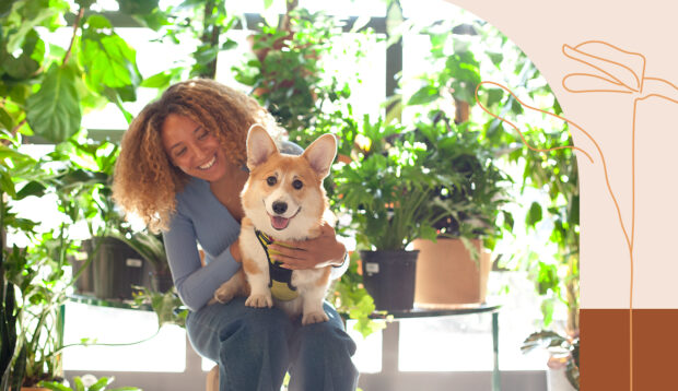4 Pet-Friendly Plants To Safely Spruce Up Your Space, According to a Plant Doctor