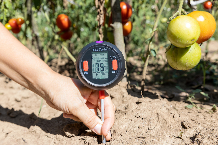 Thumbnail for Soil Temperature Is the Most Important Thing To Know for Successful Spring Gardening
