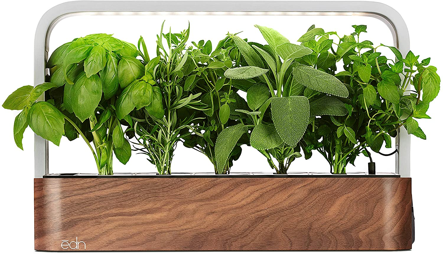 edn SmallGarden with Basil SeedPods, Indoor Grow Smart Garden Starter Kit for Fresh Home Grown Herbs, Plants and Flowers Roll over image to zoom in VIDEO edn SmallGarden