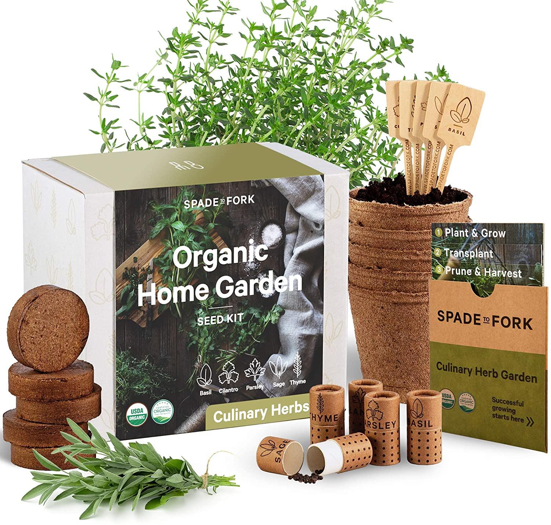 Spade to Fork Indoor Herb Garden Starting Kit