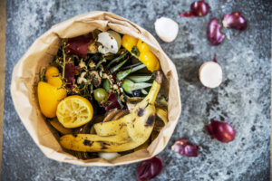 The 9 Best Foods and Other Fodder for Composting (and What To Avoid Composting at All Costs)