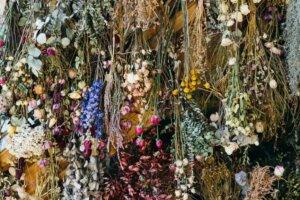 How To Dry Fresh Flowers, According to 'Full Bloom' Winner Conner Nesbit