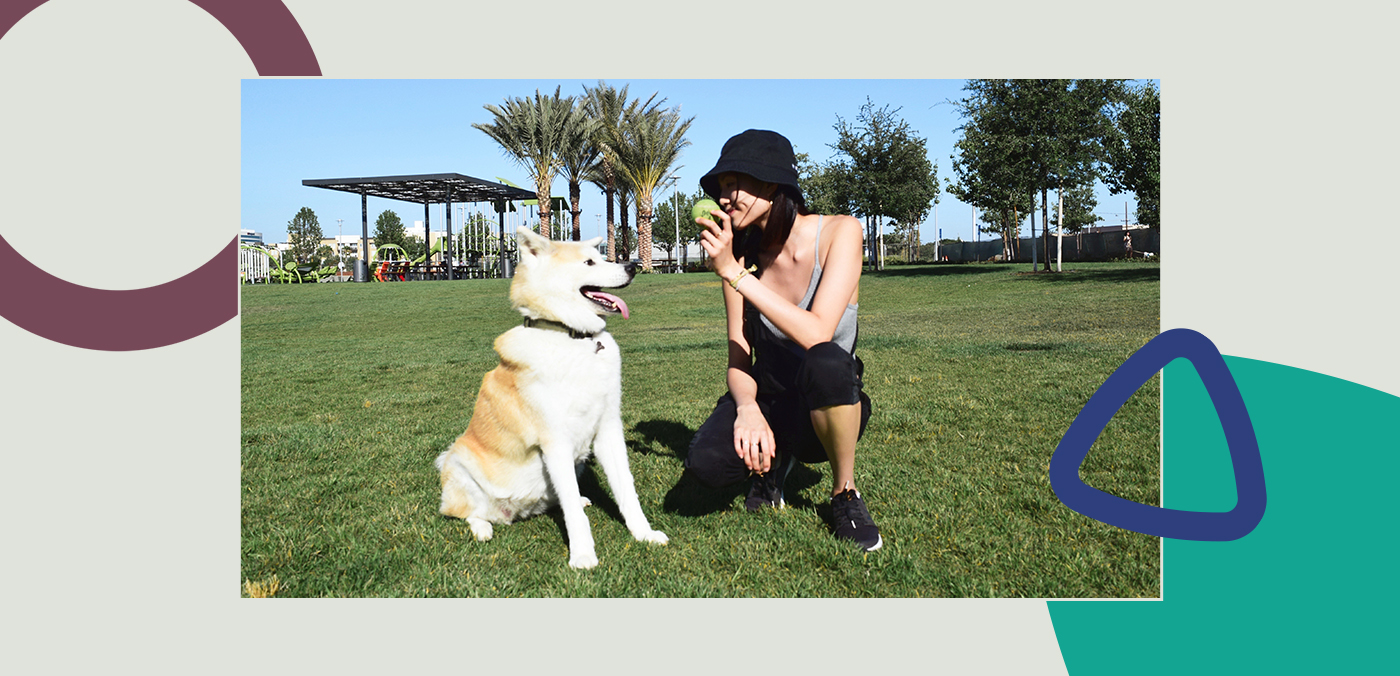 healthy routine for dogs