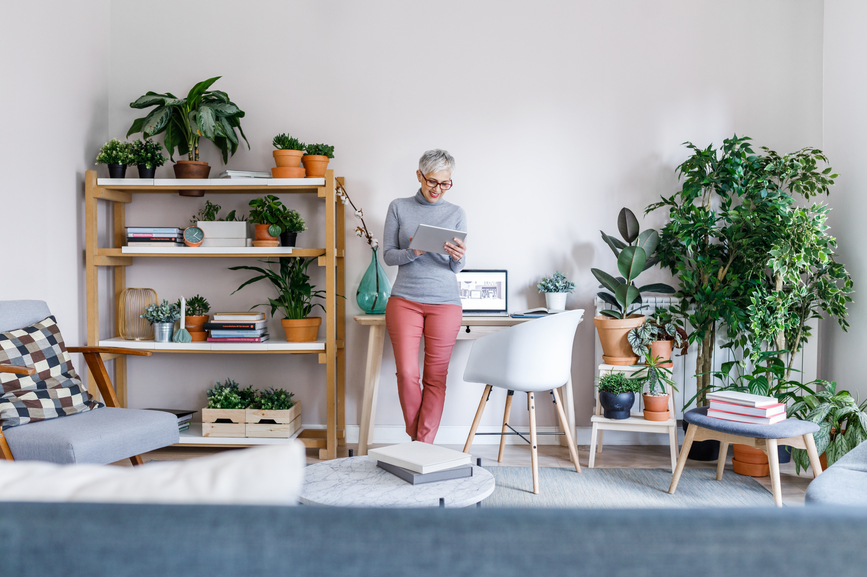Not the Greatest Plant Parent? This Subscription Service Just Launched 'Plant Insurance' Plans