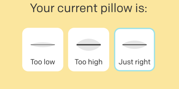 pluto pillow quiz