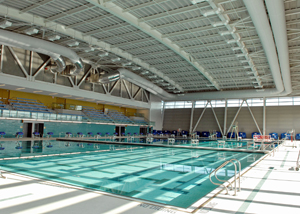 This spectacular pool in Queens was built as part of the city's 2012 Olympic bid.